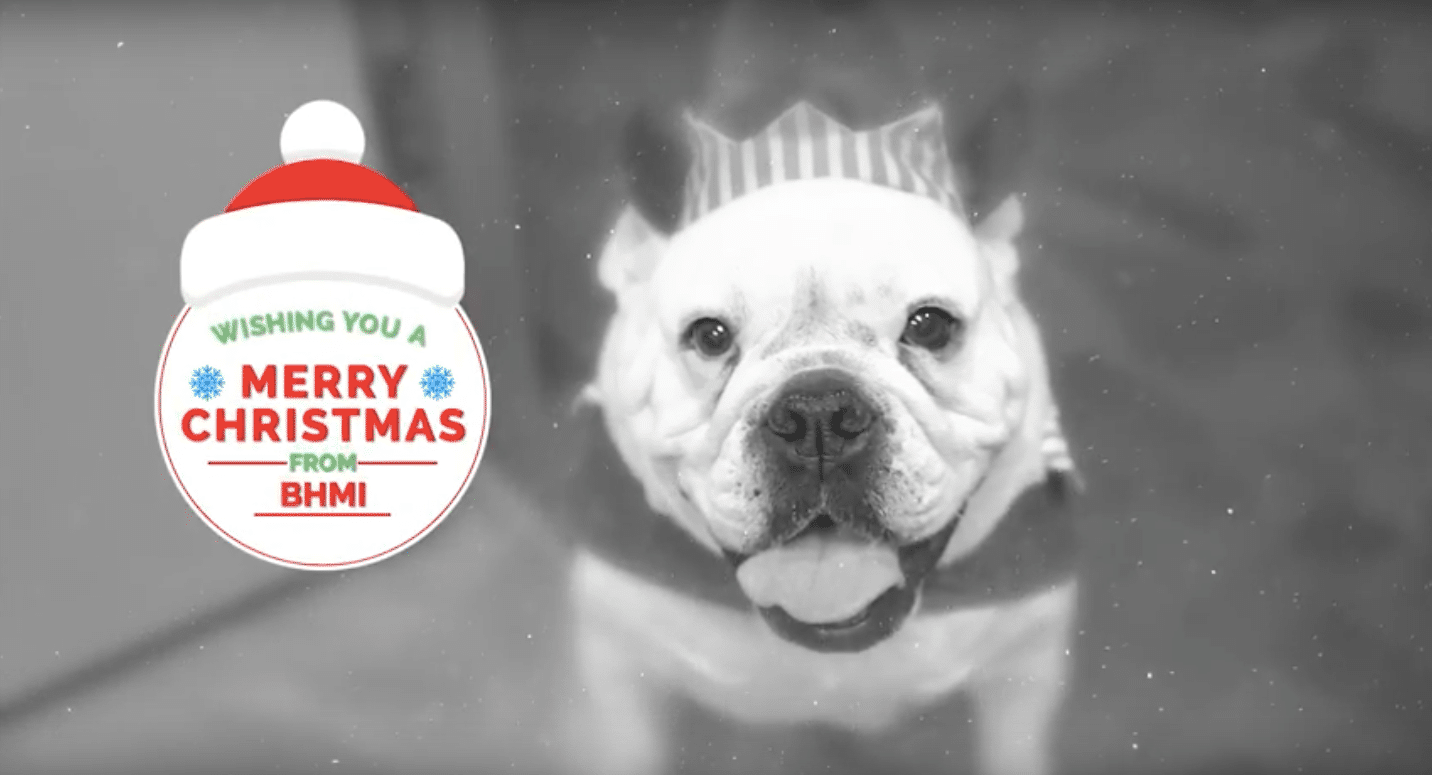 CHECK OUT OUR HOLIDAY VIDEO