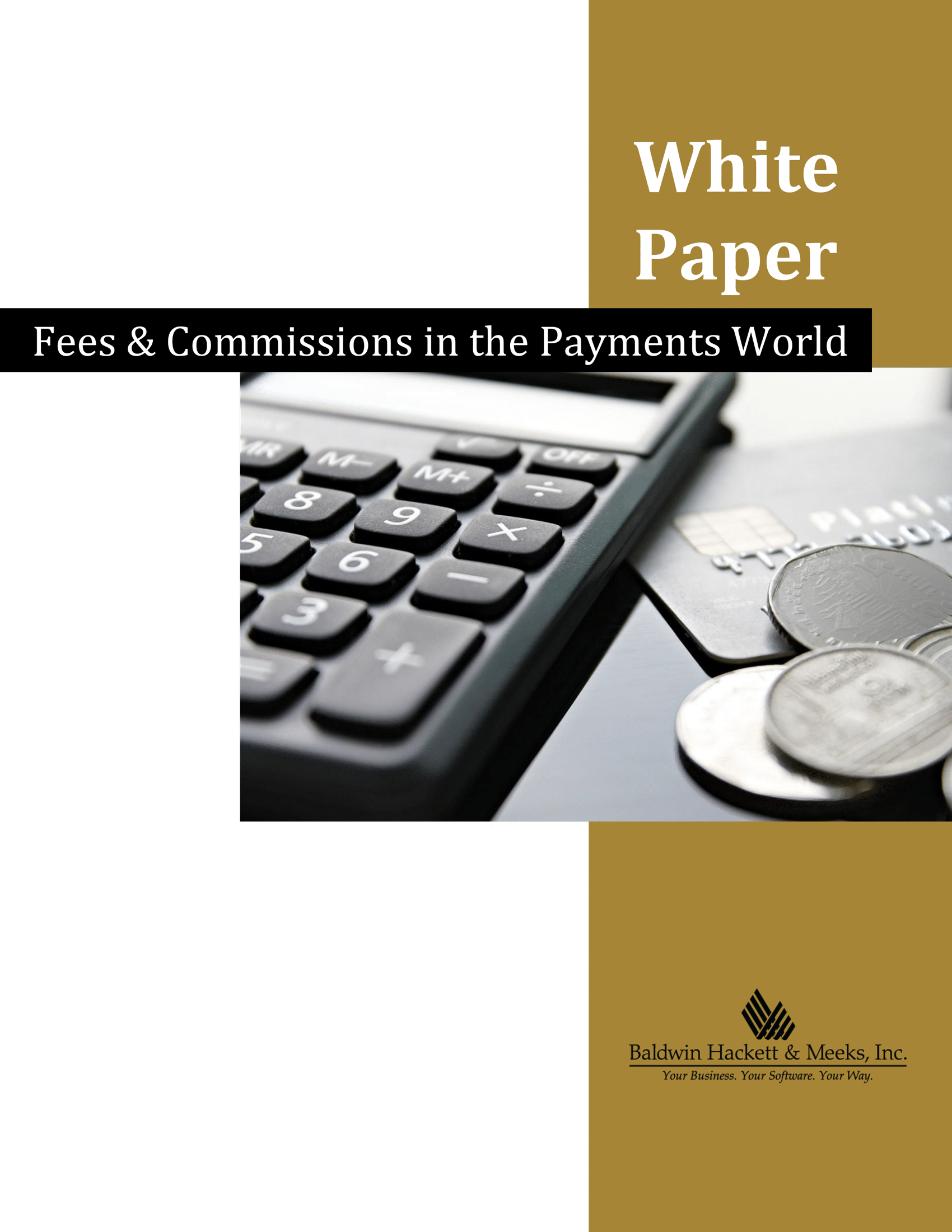 WHITE PAPER: FEES & COMMISSIONS IN THE PAYMENTS WORLD